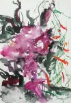 Robert Harms Hong Kong Orchid, Nevis, 2013 watercolor on paper 7 x 5 in